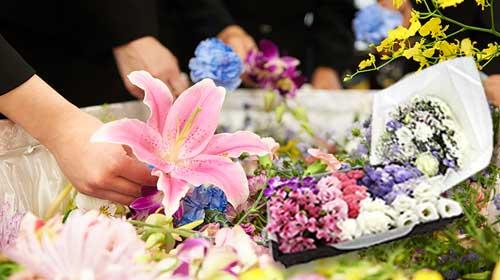 所沢市近隣地域 家族葬プラン