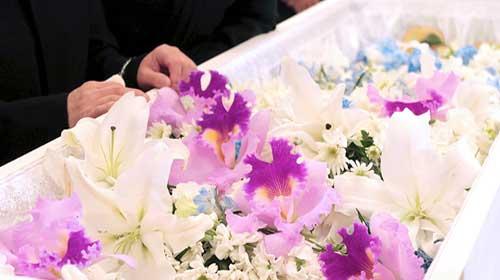 所沢市近隣地域 一日葬プラン